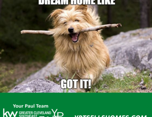 Fetching Your Dream Home!